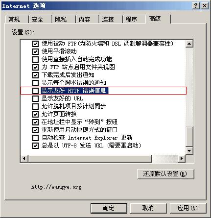 Internet 选项 - 显示友好 HTTP 错误信息