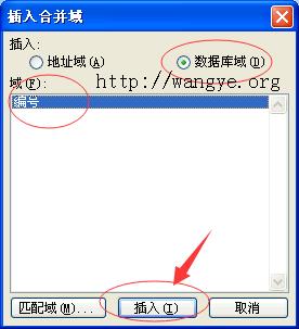 Word 2003 插入合并域
